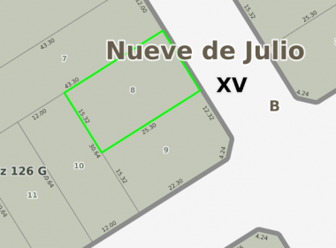 lote8_r1118